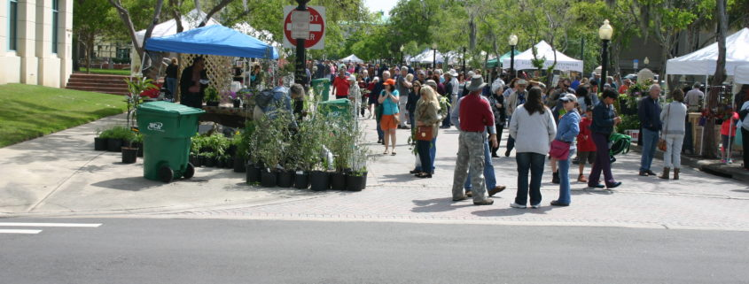 Thousands of enthusiasts enjoy the Florida Wildflower & Garden Festival