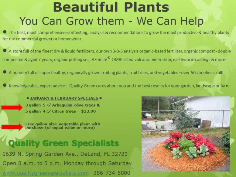ad_beacon_1-14-14_you_can_grow_beautiful_plants.jpg