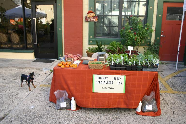 artisan_alley_farmer__s_market_best_with_thor_10-23-15