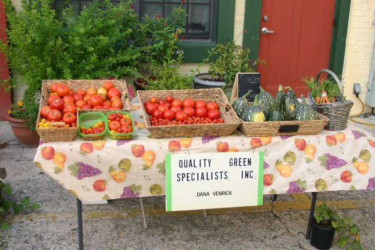 artisan_alley_farmer__s_market_tomates___calabaza_squash_june_2015
