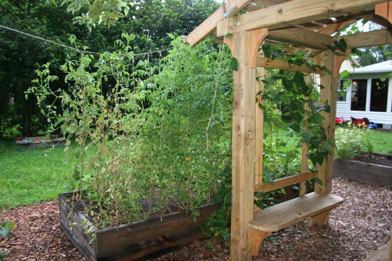 Garden Update 7 Brian OHalloran