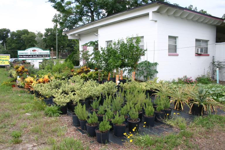 nursery display 6-20-15
