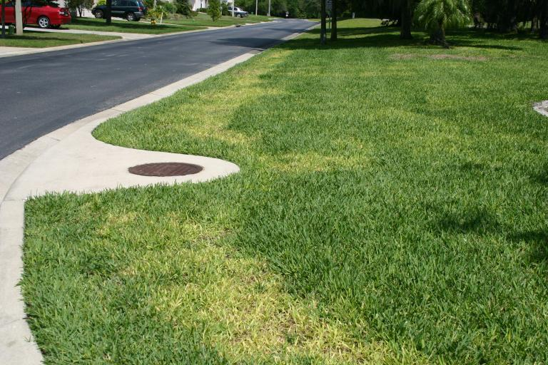 Lawn DeBary fertilized with 3-0-5 photo A 4-27-14