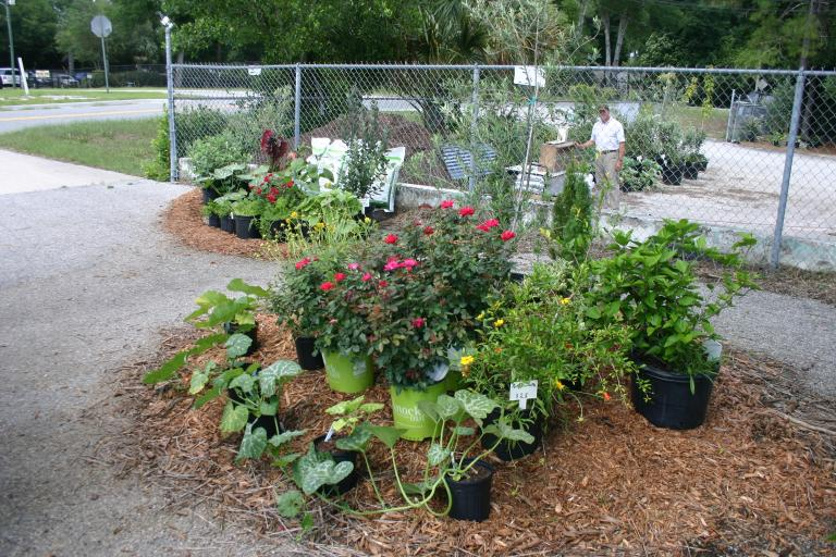 nursery_display_front_left_with_david_wiggins_5-1-15