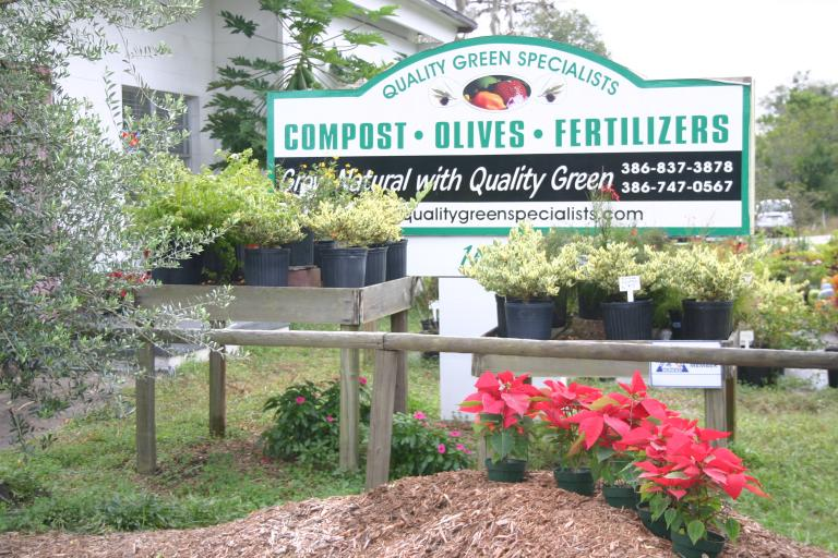 nursery_front_display_showing_poinsettias_on_mulch___sign_12-4-15