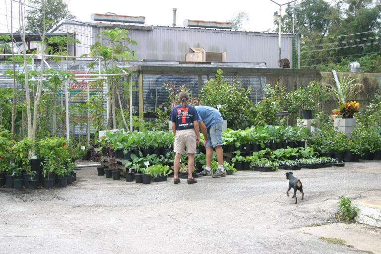 Nursery south view thor_at_the_nursery_with_alex_and_a_customer_12-4-15